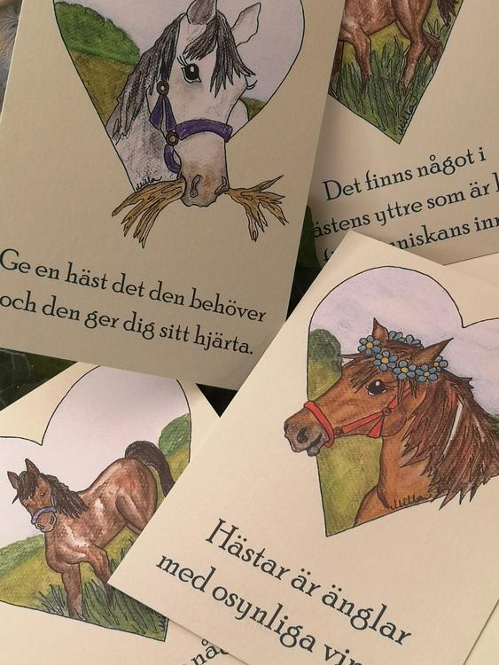 Vykort, hästar
