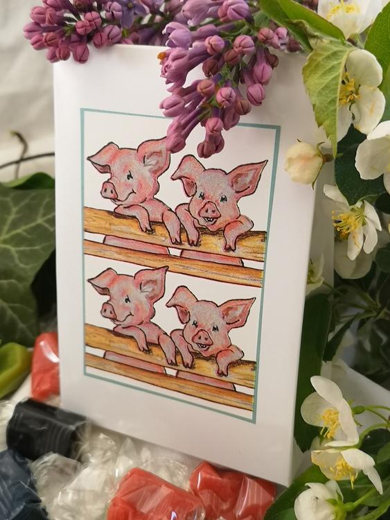Kolapåse  med grismotiv, 2 storlekar
