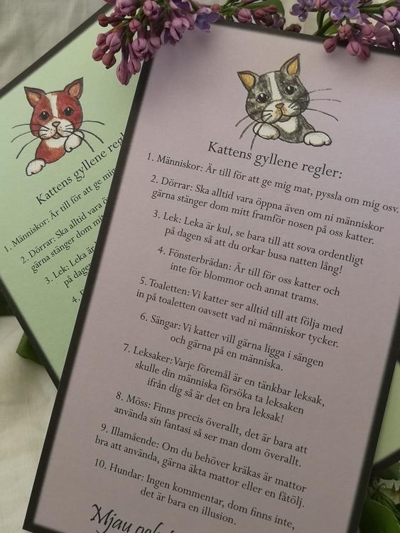 Kort, kattens regler