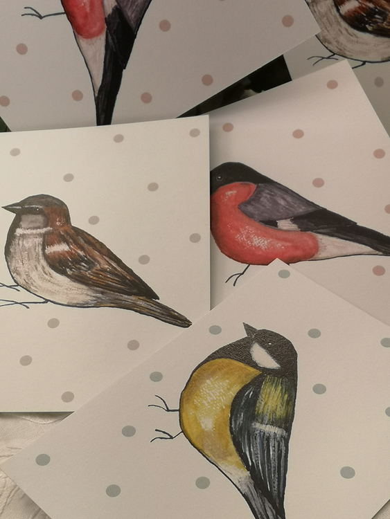 Kort, fåglar