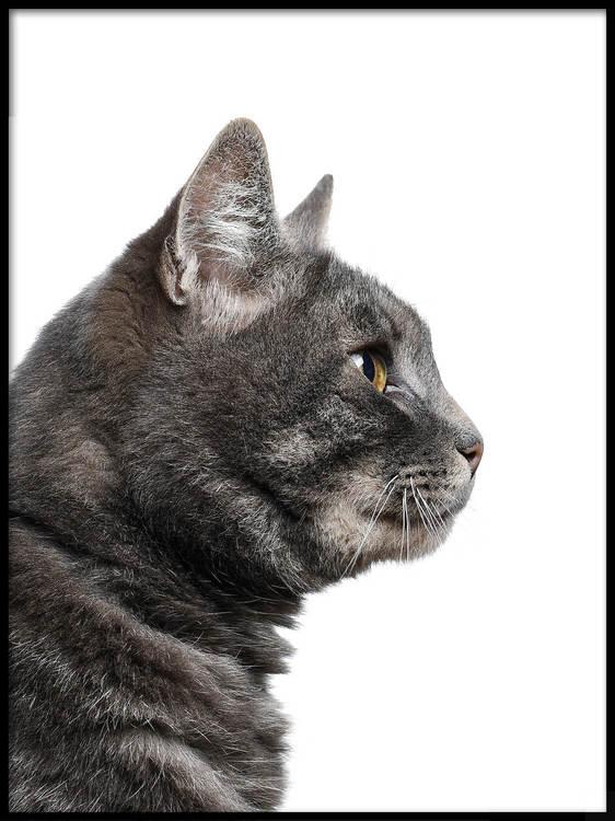 Poster Katt i profil