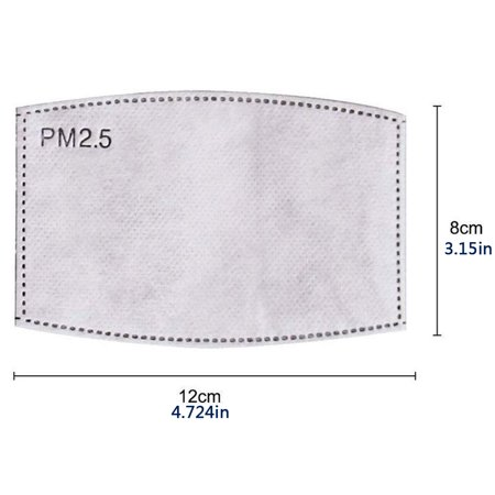 PM 2.5 Filter 2-pack