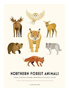 Poster Northern Forest Animals, Casablanca paper