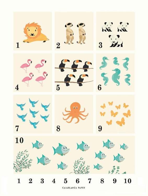 Poster Animals 123, Casablanca paper