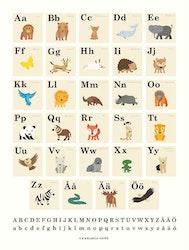 Poster Animals ABC, Casablanca paper