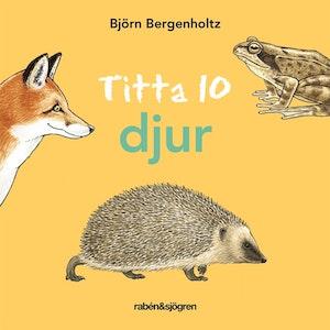 Titta 10 djur, Björn Bergenholtz