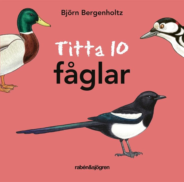 Titta 10 fåglar, Björn Bergenholtz