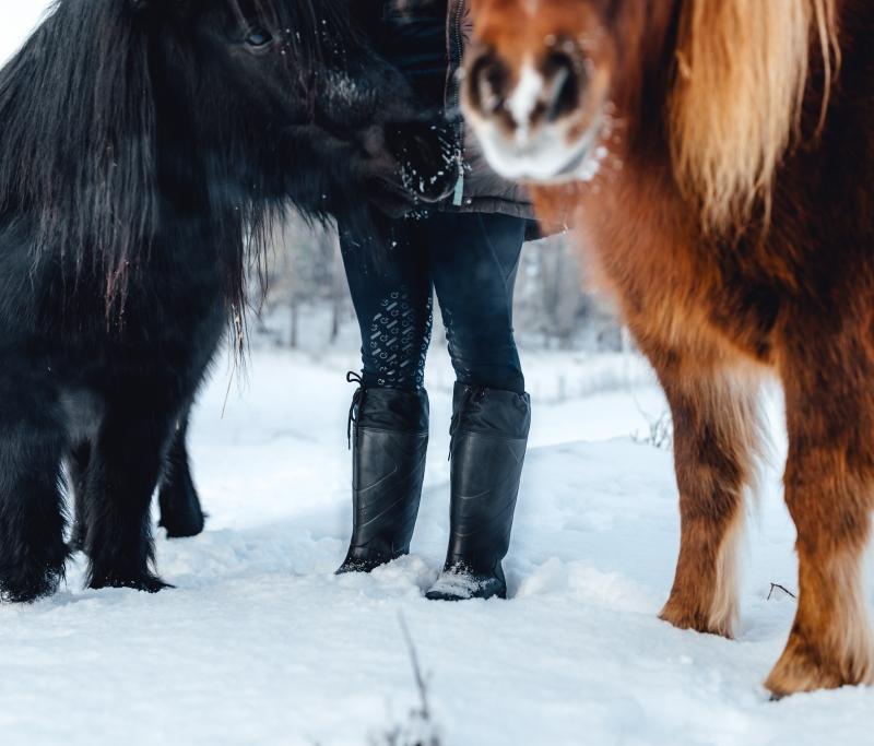 Vinterstövlar i stallet