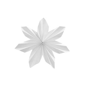 Pappersstjärna Dalby -Från