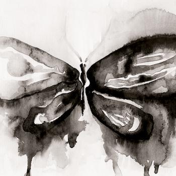 Poster fotokonst Black Butterfly - Storefactory