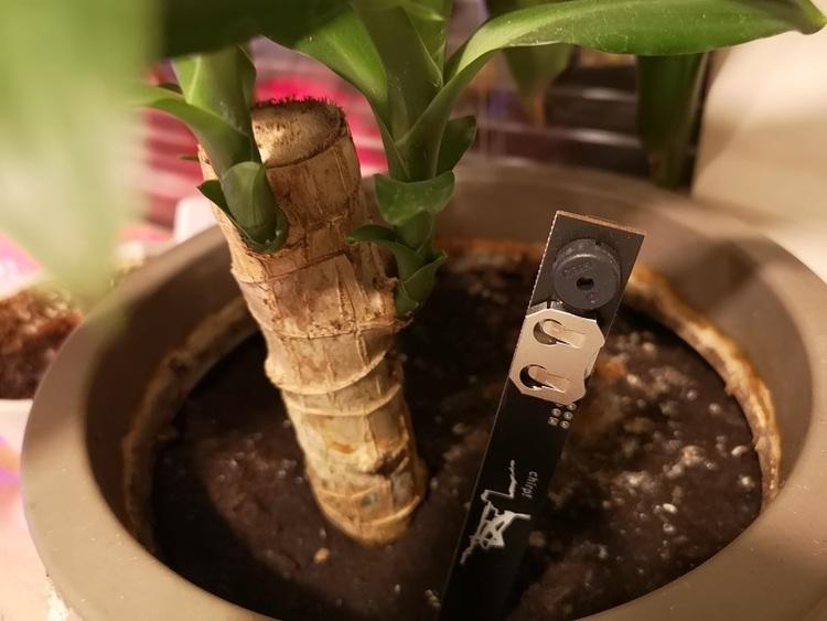 Plant watering alarm  - växtvattensalarm