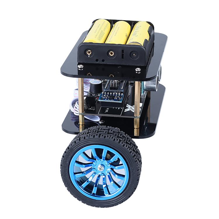 Mini Transport Robot Wireless Control Self Balancing Robot