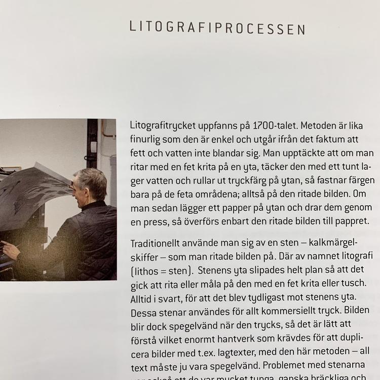 """Karl Mårtens """"När intuitionen får styra"""""""
