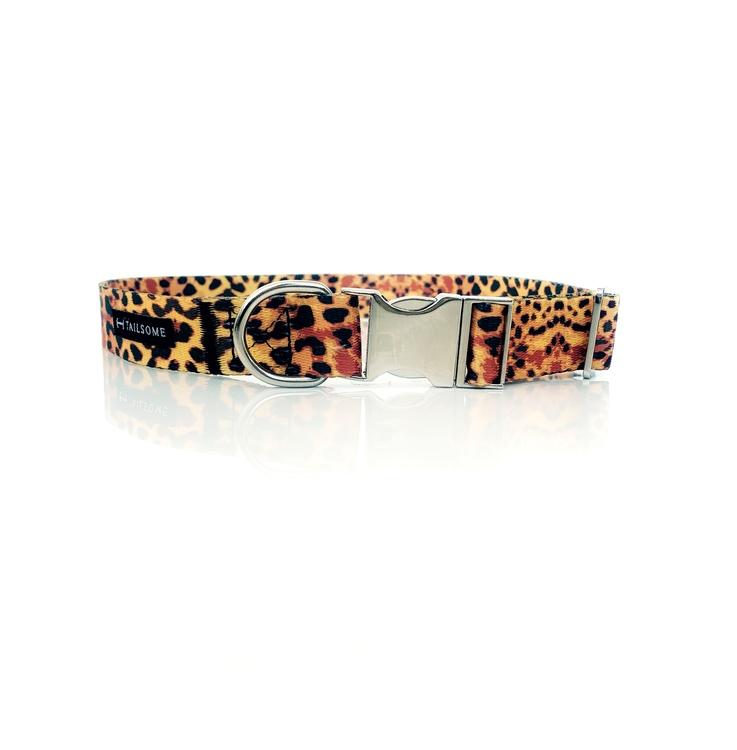 Hundhalsband med leopardmönster