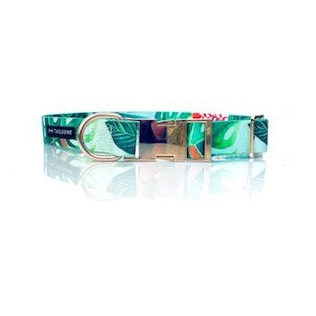 Halsband Tyg Blad Grön