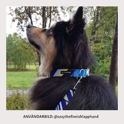 Halsband Tyg Randig Blå