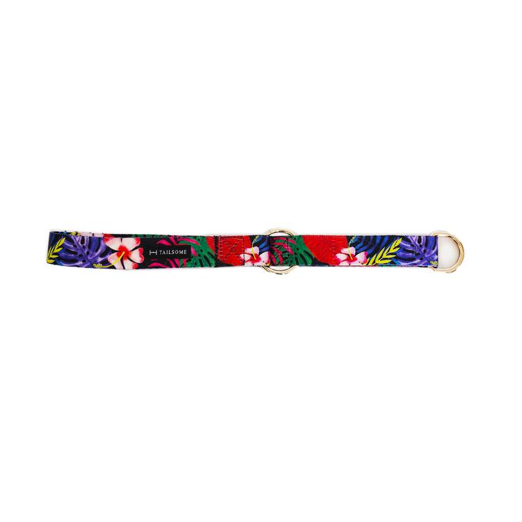 Blommigt hundhalsband med halvstryp