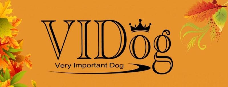 VIDog AB Org 559175-5938