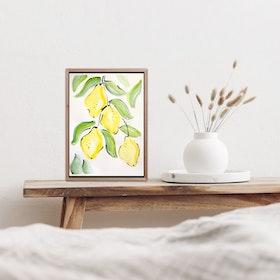 Citroner II
