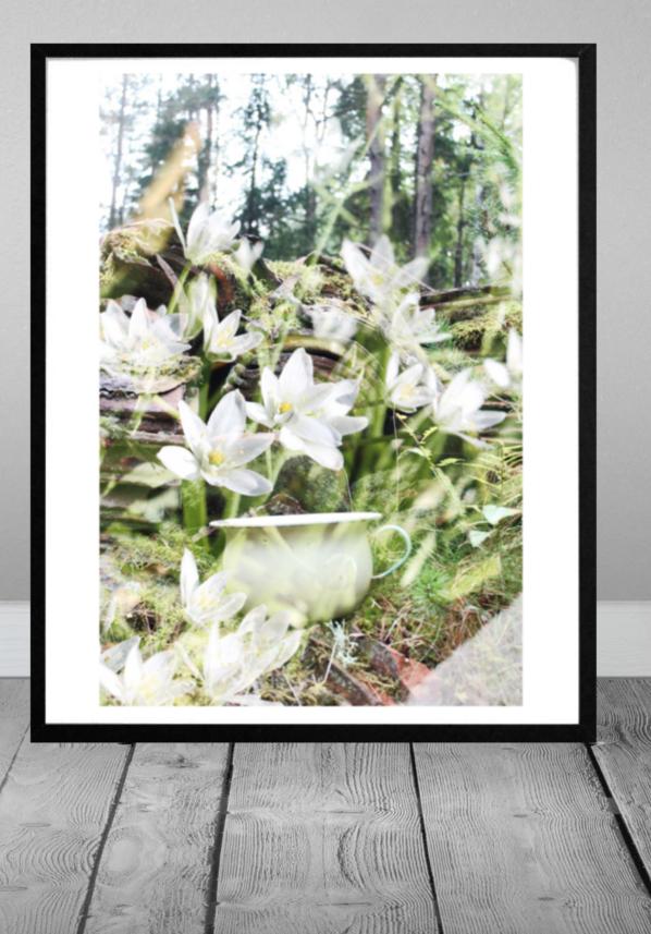 Forrest flower