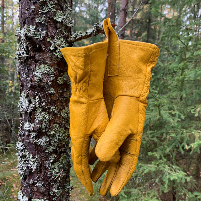 Bushcraft Leather Gloves hanging and drying up in the forest