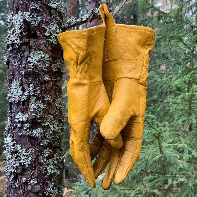 Bushcraft Leather Gloves hanging from a tree