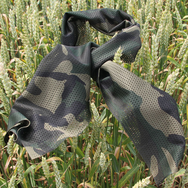 Summer photo of a Sniper Scarf Forest.