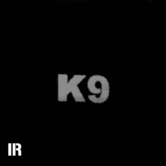 A IR - K9 Red Hook Patch seen through a Infrared camera