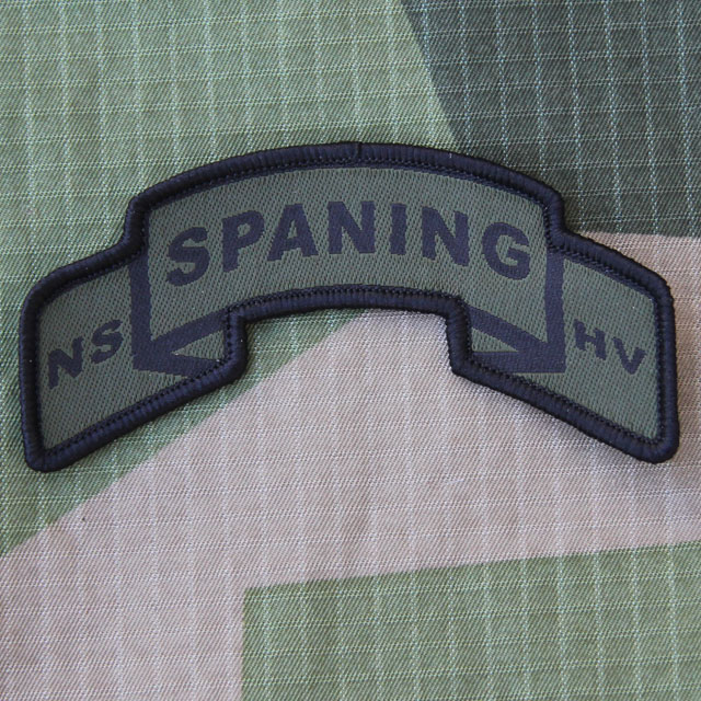 A SPANING Scroll Patch on a M90 camouflage background.