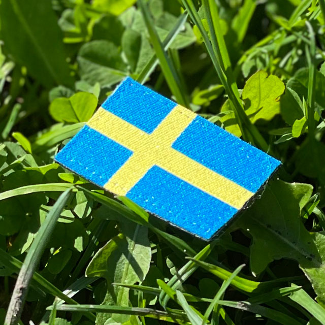 From ana ngle a Sweden Flag Hook Patch Arm with grass background