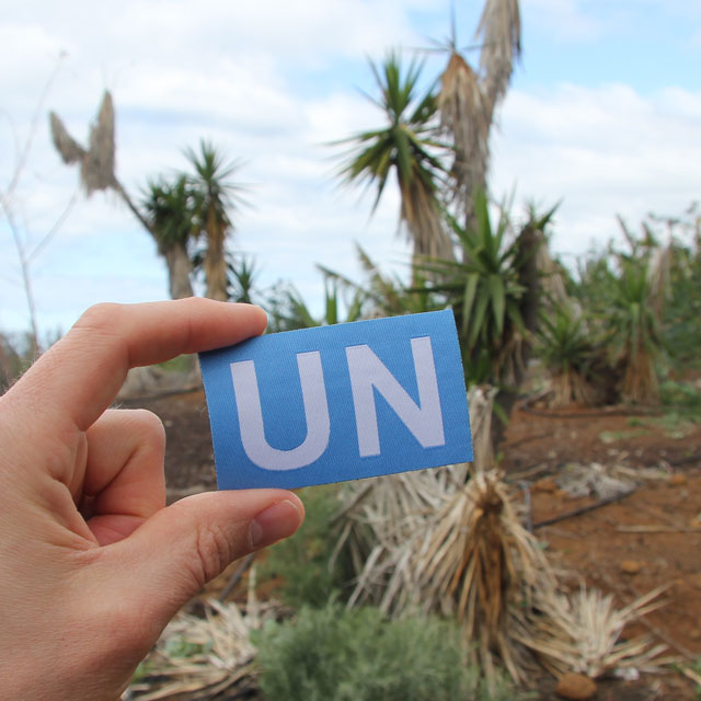 A United Nations Hook Patch Large shown in oalm tree scenery.