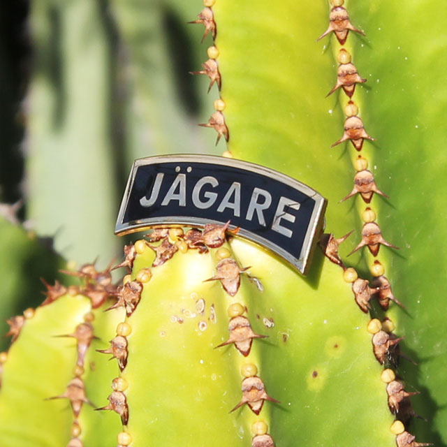 Productphoto of a Pin JÄGARE Gold/Black on a cactus.