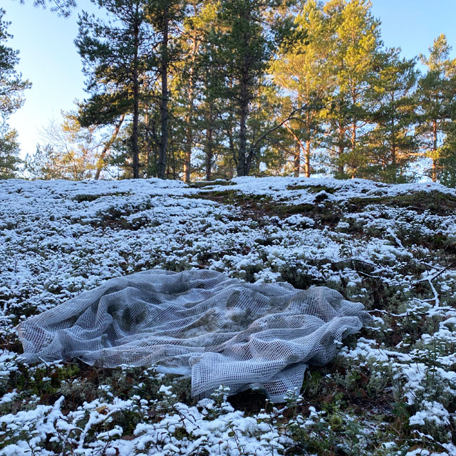 Scrim Net Scarf White Moss on the forest ground with snow and moss
