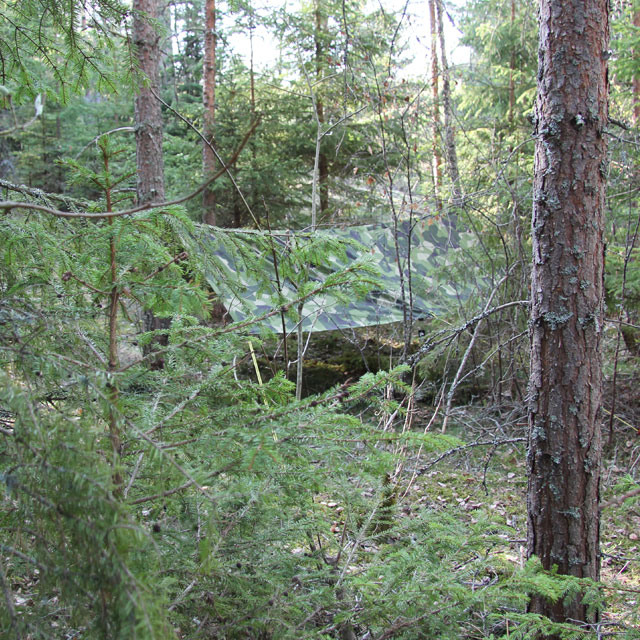 M90 camouflage works well in Swedish forest, here a Tarp M90 Light