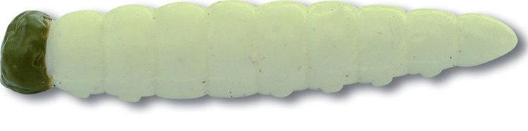 Maggot med vitlöksdoft