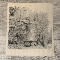 Disktrasa träd svart/vit