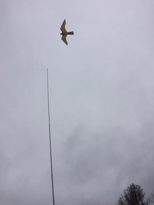 6,25 meter Fågelskrämma Aluminium.