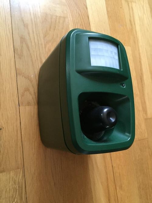 Fågelskrämma ljud med sensor
