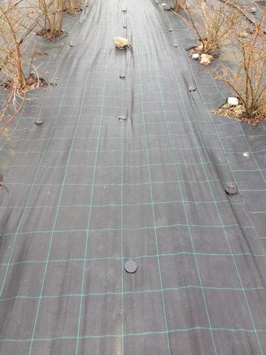 MARKTÄCKVÄV svart 100 meter x 4,2 m bred.