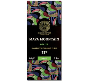 Chocolate Tree - Maya Mountain