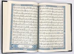 Sammet Koran Babyrosa