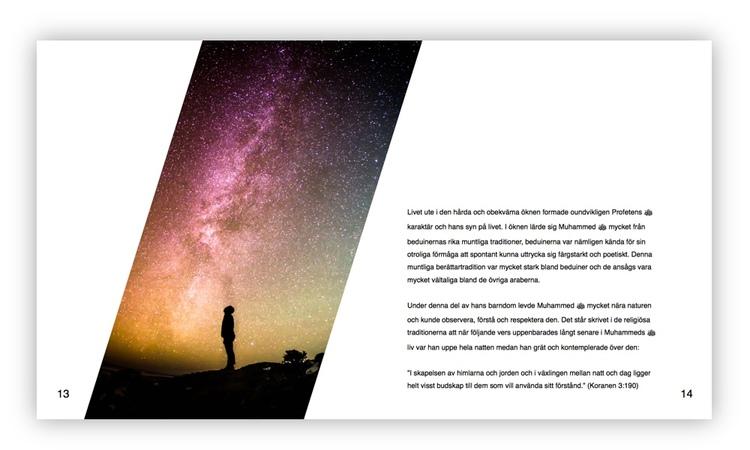 Det sista Sändebudet (e-bok)
