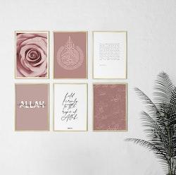 6 liten rosa och vit kombination