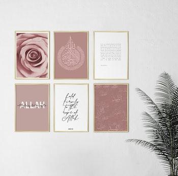 6 Liten Rosa Och Vit Kombination Poster