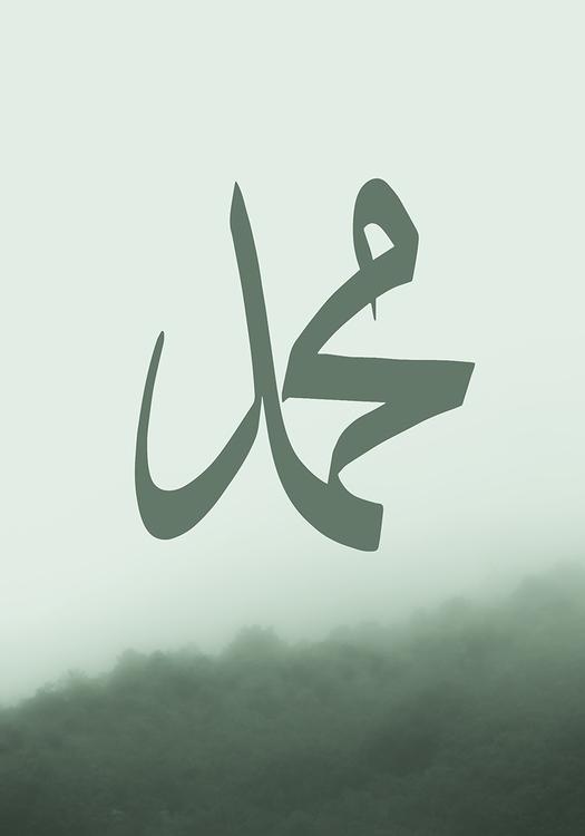muhammed tavla