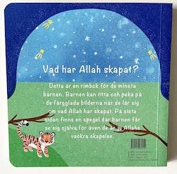 Vad har Allah skapat?