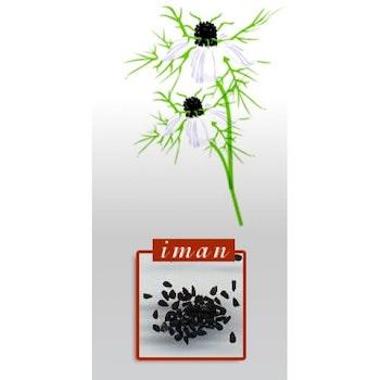 Virgin Black Seed Oil