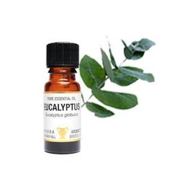 Eterisk olja - 10ml - Eucalyptus