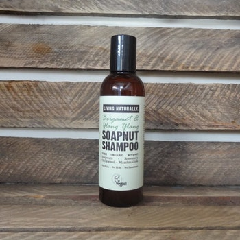Fragrance free soapnut Schampoo - 200 ml