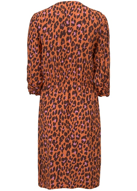Robbie Print Dress - Colourful Leo